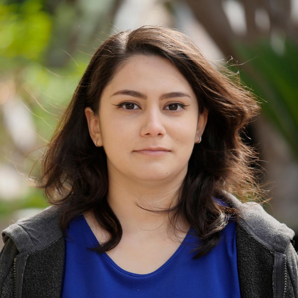 Alicia Sanchez, Animator